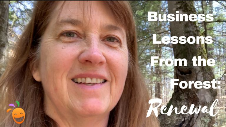Business lessons from the forest