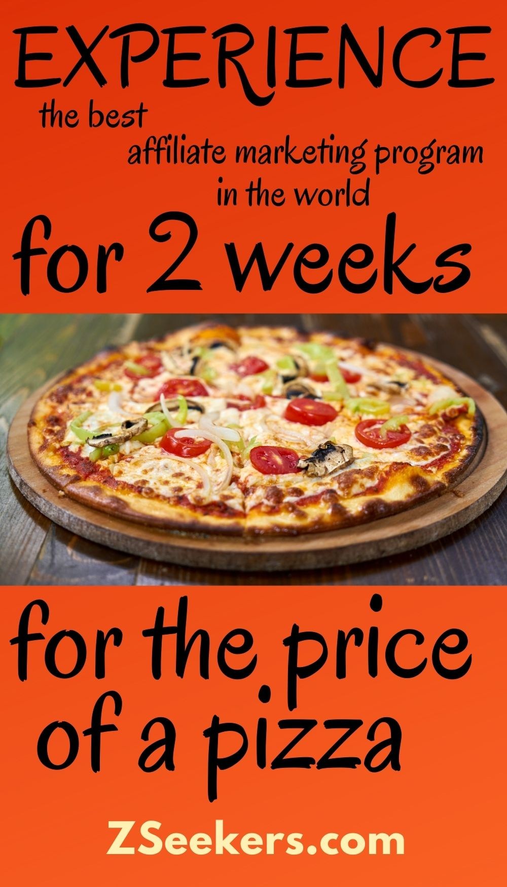 You can experience the best affiliate marketing program in the world for beginners for two weeks, for the price of a pizza