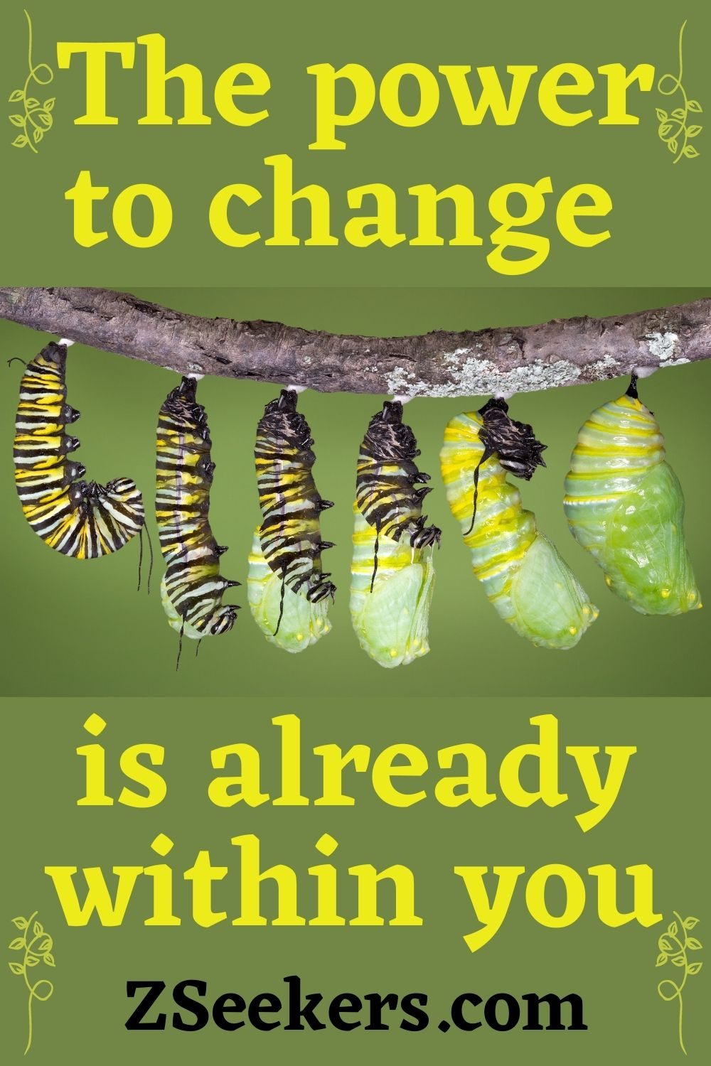 The power to change is already within you - monarch caterpillar building its cocoon
