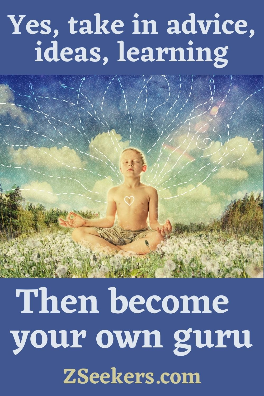 Yes, take in advice, ideas, learning, then become your own guru